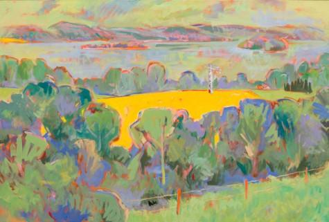 Landschaft mit Rapsfeld und See